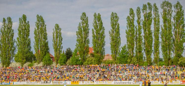 """Sportplatz """"Junge Welt"""""""